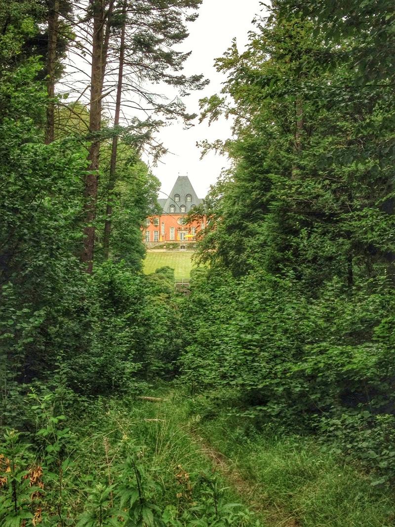 Frohnleichnam im Wald