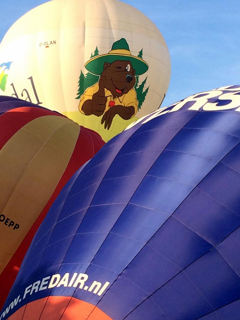 rheinaue bonn rundumbonn jeckyl ballonfestival