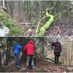 Ausflug in den Gießener Bergwerkswald
